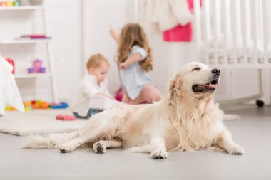 selective focus of sisters playing on floor, golden retriever lying on foreground in children room