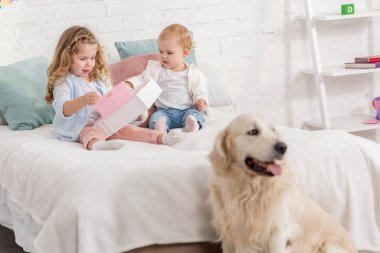 adorable sisters playing on bed, fluffy golden retriever sitting near bed in children room