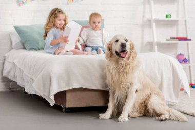 adorable sisters playing on bed, golden retriever sitting near bed in children room