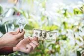 oříznutý pohled člověka drží sto dolaru bankovek a led lampa v rukou, koncepce energetické účinnosti