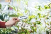 oříznutý pohled člověka drží sto dolar bankovky a karty s nápisy, koncepce energetické účinnosti