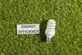top view of fluorescent lamp near card with energy efficiency lettering on green grass