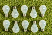 pohled shora zářivky na zelené trávě, koncepce energetické účinnosti