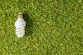 Fotografie pohled shora na zářivku na zelené trávě, koncepce energetické účinnosti