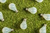 Fotografia vista superiore delle moderne lampade fluorescenti su erba verde, concetto di rendimento energetico