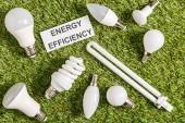 Fotografia vista superiore delle lampade fluorescenti vicino scheda con lettering di efficienza energetica su erba verde