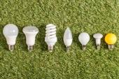 plochý tvar zářivky na zelené trávě, koncepce energetické účinnosti