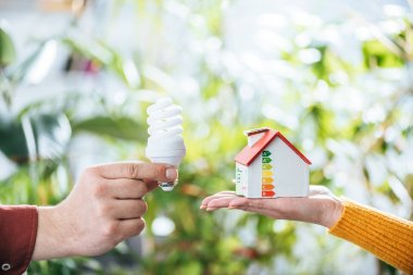 cropped view of man holding fluorescent lamp near woman with carton house in hand, energy efficiency at home concept