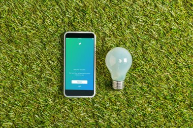 top view of fluorescent lamp near smartphone with twitter app on screen on green grass, energy efficiency concept