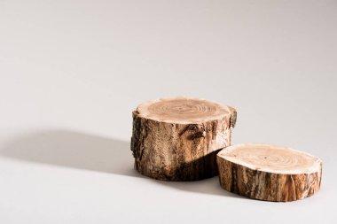 Studio shot of cut wood on grey