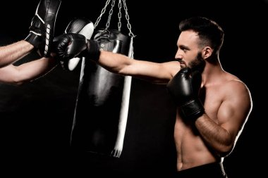 Muscular boxer fighting with man in punching gloves isolated on black stock vector