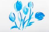 Pohled shora modré akvarel květy na bílém pozadí