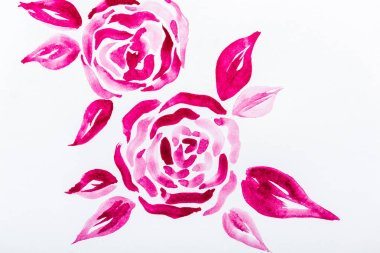 Top view of pink watercolor flowers with leaves on white background