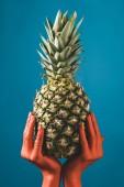 částečný pohled ženy držící Zralý ananas plody v coral barevné ruce na modrém pozadí, barva konceptu 2019
