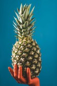 Fotografie partial view of color colored female hand holding ripe pineapple fruit on blue background, color of 2019 concept