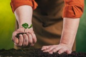 selective focus of man planting young green plant in ground on blurred background, earth day concept