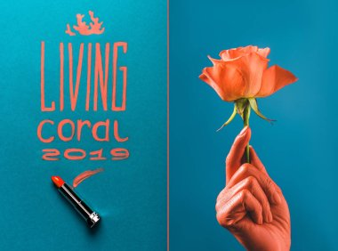 Color of year 2019 handwritten lettering with coral lipstick, and partial view of coral colored female hand with coral rose on blue divided background stock vector