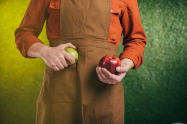 partial view of man holding apples on blurred background, earth day concept