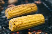 Selektivní fokus žlutá kukuřice s krustou z grilování grilovací mřížky