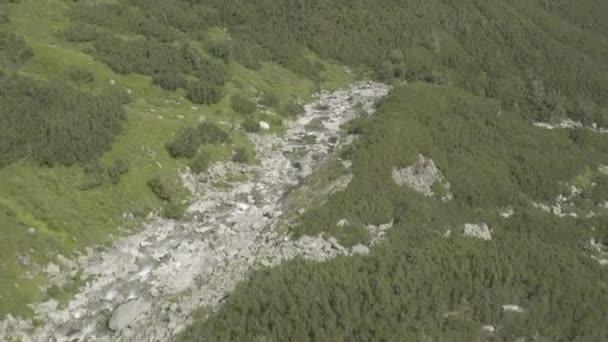 údolí s řekami ve Vysokých Tatrách, tento klip je k dispozici ve dvou různých odstupech, 10bitová barva nebo DJI barevný Lút