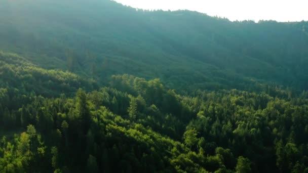 vzdušné záběry lesů a hor