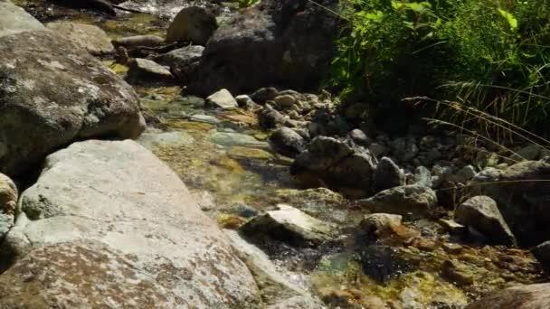 Proudící potok v horách, Tatry hory, Slovensko