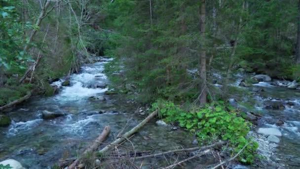Tekoucí řeka v horách, Tatry, Slovensko