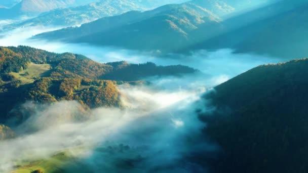 Letecký snímek krásně zbarvených stromů v podzimních horách a mlze