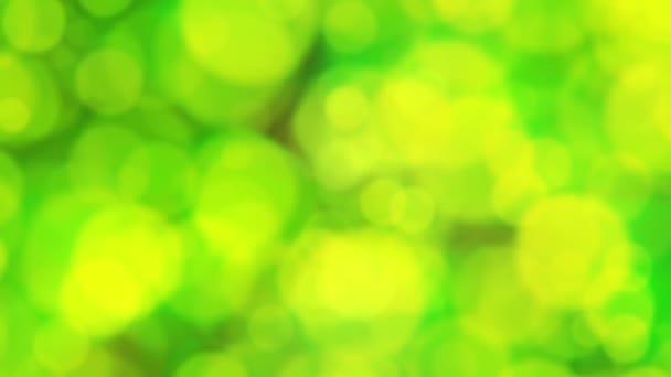 Absztrakt foltos körökben háttér Loop / absztrakt zöld foltos körökben háttérben lebegő véletlenszerűen