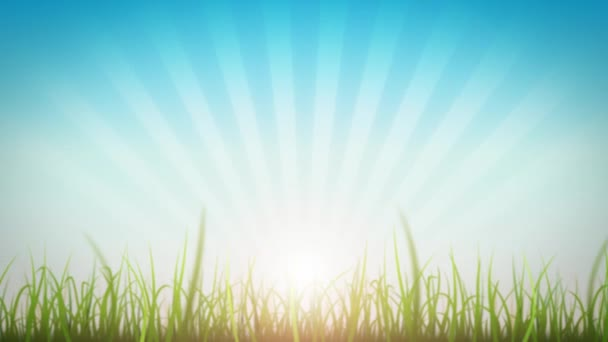 Grass Leaves On Beautiful Sky Background Loop/ 4k animation of a loopable beautiful nature background with blades of grass moving with the wind and lens flare for shining sun effect