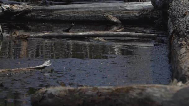 Ushuaia tájak és tavak, Argentína