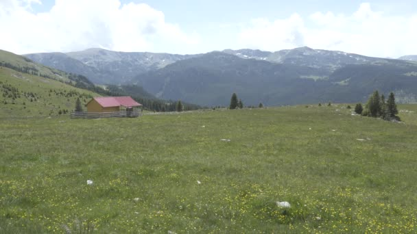 Trip of Transilvania Nature and Landscapes