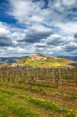 Staré středomořské město Motovun s okolní krajinu na poloostrově Istrie, Chorvatsko, Evropa
