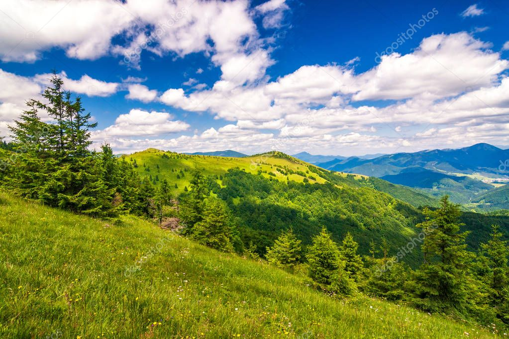 Spring landscape with grassy meadows and the mountain peaks, blue sky with clouds in the background. The Donovaly area in Velka Fatra National Park, Slovakia, Europe.