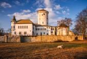 Středověký hrad Budatín nedaleko od Žilina, střední Evropa, Slovensko.