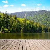 Moraine lake Grosser Arbersee a Bajor-erdő nemzeti park. Németország.