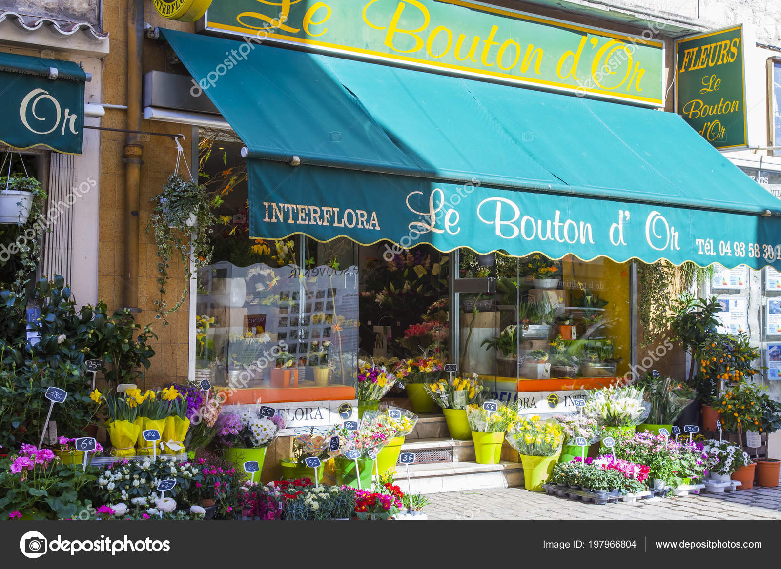 Vence france march 2018 street show window beautiful flower shop vence france march 2018 street show window beautiful flower shop stock photo izmirmasajfo