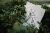 Fotografia chiudere la visualizzazione di carte di invito di nozze con la siluetta di montagna Matterhorn