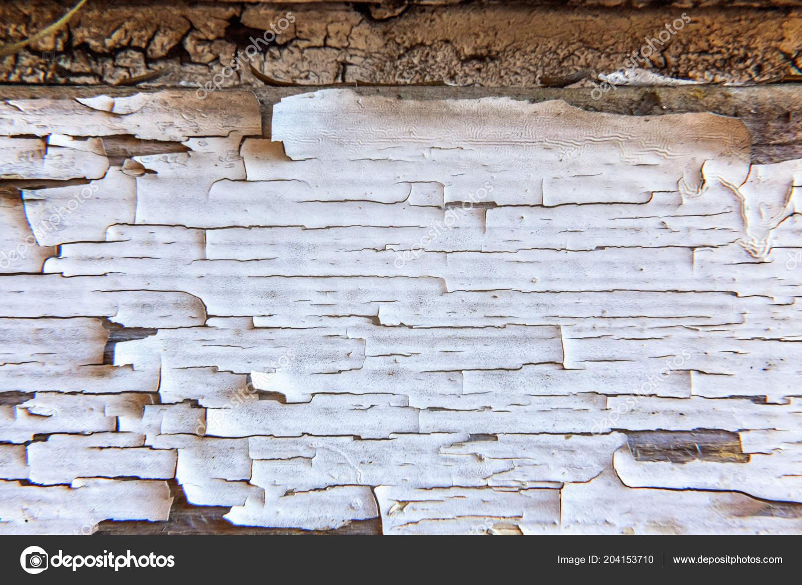 Texture bois vieux affligé fond grunge pelage rayé blanc peinture