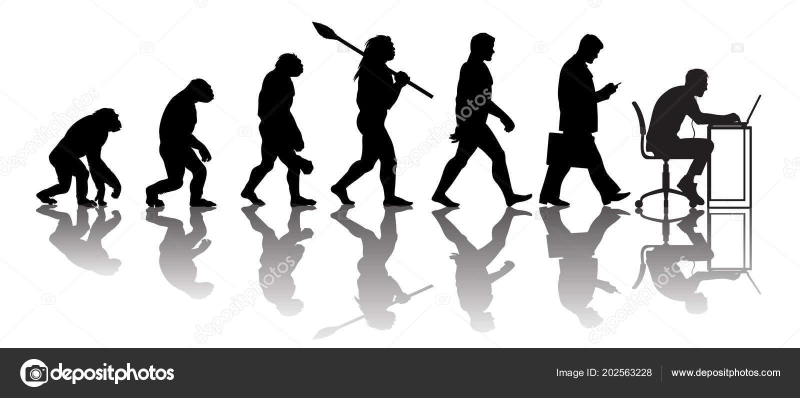 Evolution Mensch Computer