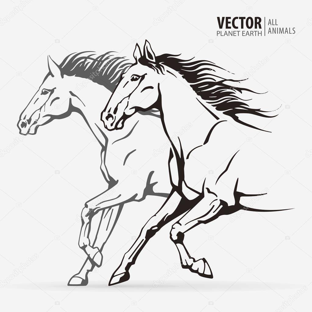 Beautiful Arabian Horses Silhouettes Of A Running Horses Galloping Animal Sport Vector Illustration Premium Vector In Adobe Illustrator Ai Ai Format Encapsulated Postscript Eps Eps Format