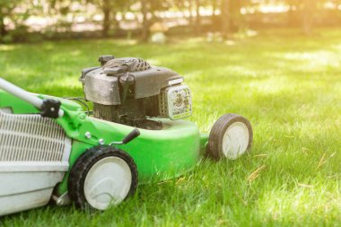 Green lawn-mower on fresh lawn at yard. Tools for cutting grass. Gardening and equipment service concept