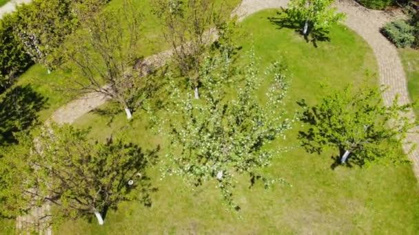 Letecký pohled na ovocnou zahradu s kvetoucí ovocnými stromy, zelený travní trávník a dlážděné kamenné patky. Zahradní a zahradnické oddělení.