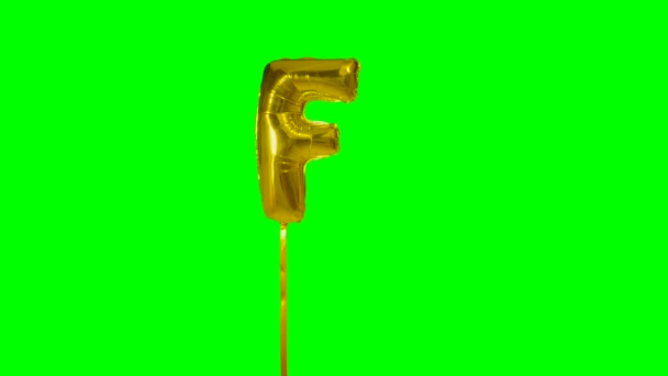 Letter F from alphabet helium gold balloon floating on green screen