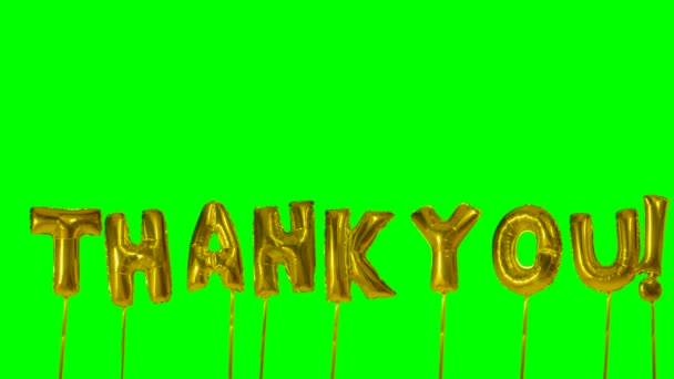 Word thank you from helium golden balloon letters floating on green screen