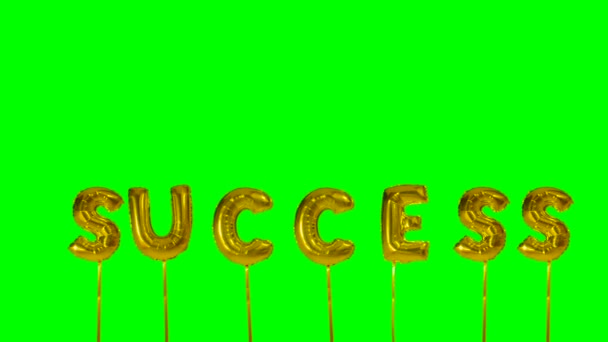 Word success from helium golden balloon letters floating on green screen