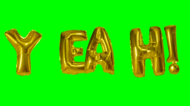 Word yeah from helium gold balloon letters floating on green screen
