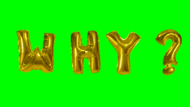 Word why from helium gold balloon letters floating on green screen