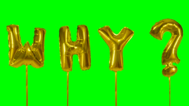 Word why from helium golden balloon letters floating on green screen
