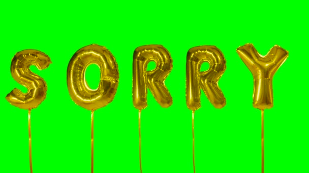 Word sorry from helium golden balloon letters floating on green screen